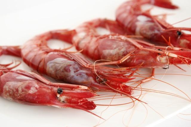 gamba roja. curiosidades y caracteristicas, pesca casa manolo by manuel alonso
